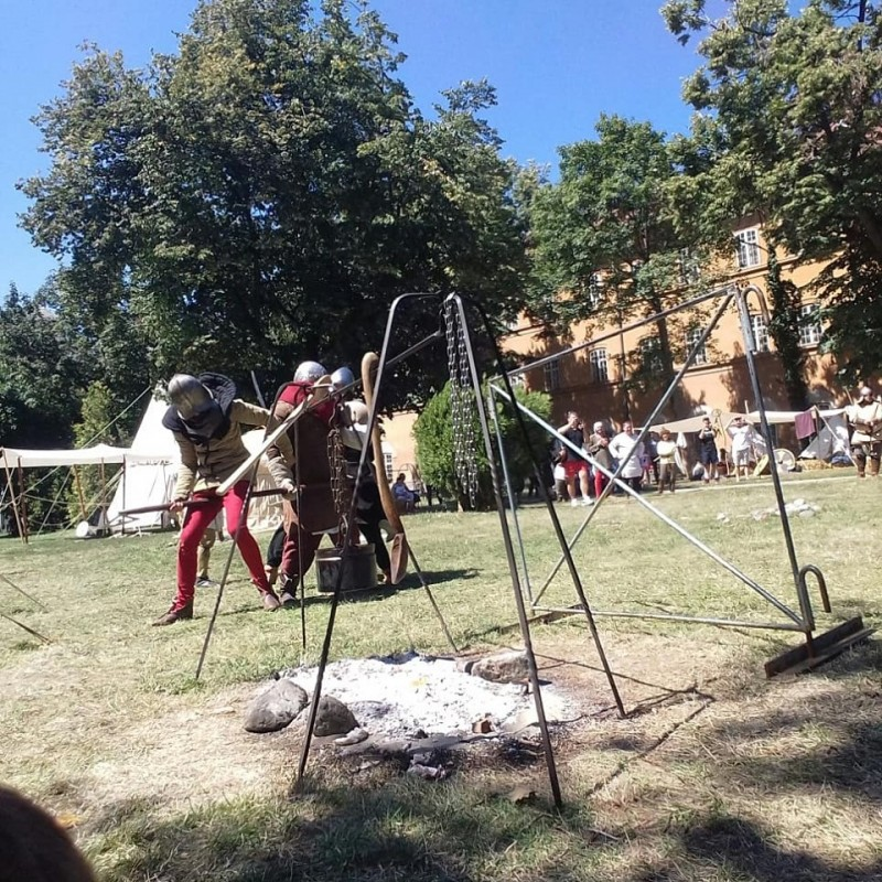 Festivalul Medieval Timișoara 2019